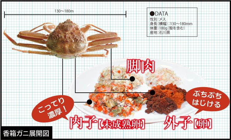 香箱ガニ甲羅盛り通販