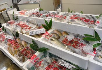 お刺身盛り合わせは豊富な魚種からチョイスします