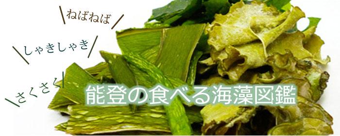 能登の食べる海藻図鑑